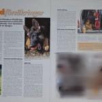 Brukshunden 3/2012