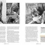 Hundens språk - sid 3