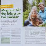 Härliga hund Nr 9 2011 sid 1