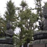Tokyo - De två buddhorna