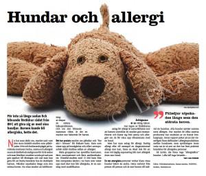 Hundar och allergi